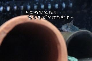 0904 (3).JPG